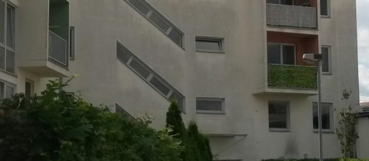 Odstranění plísní a mechů z budov v Praze
